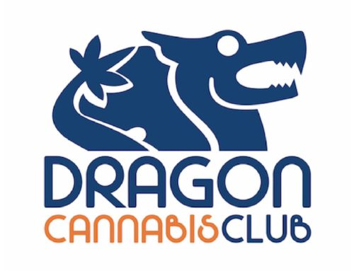 Recensione del Dragon Cannabis Club