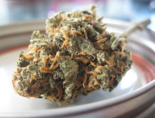 Marihuana Shop