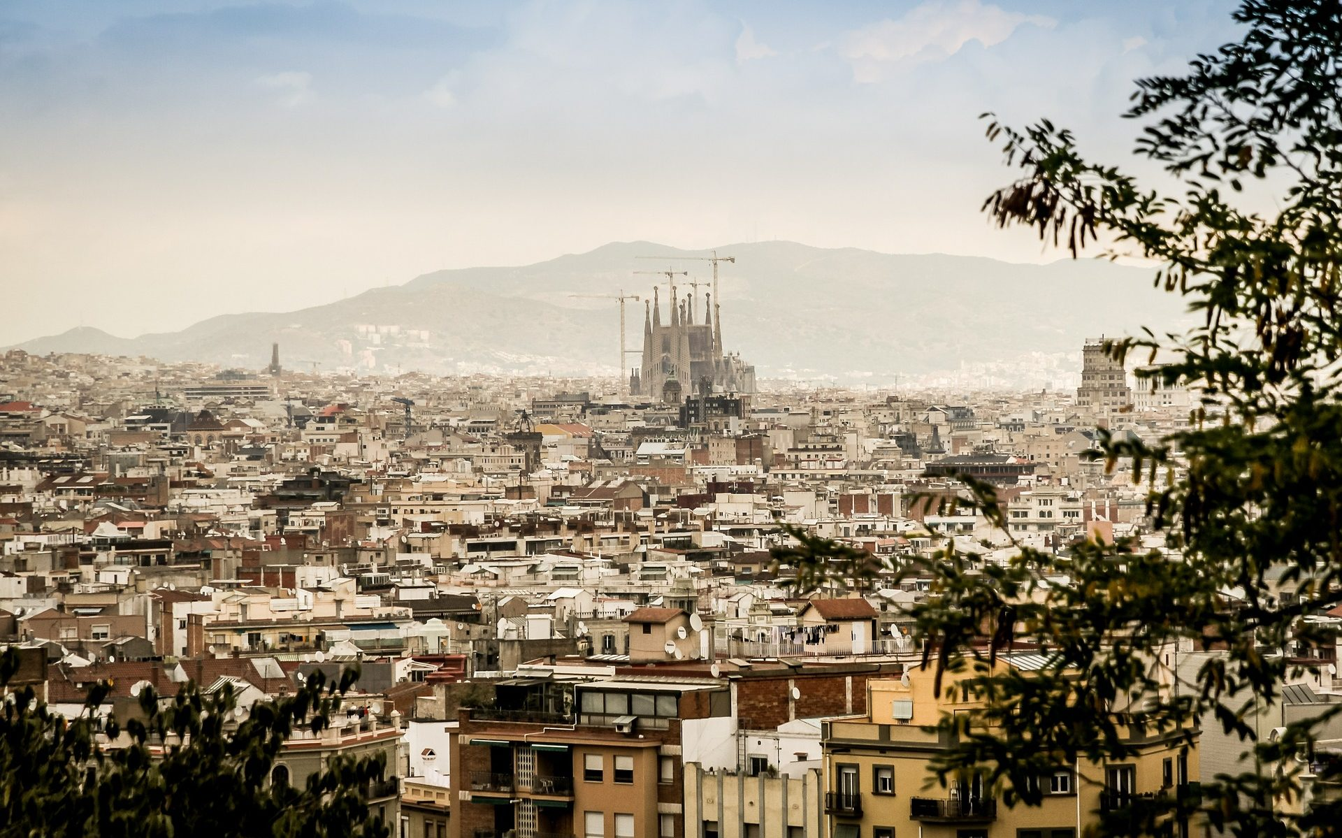 Panorama view of sagrada familia