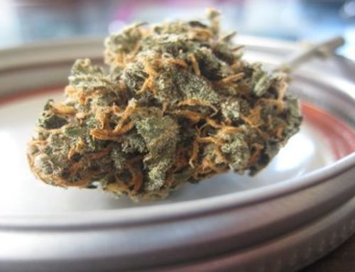 Baking With Marijuana 101 | Cannabis Barcelona