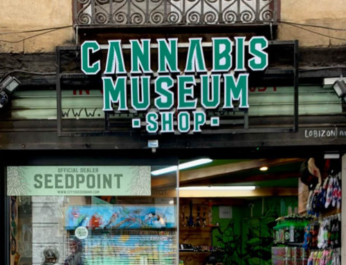 Cannabis Amsterdam Museum Shop Review