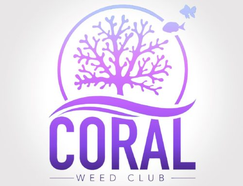 Coral Weed Club Review