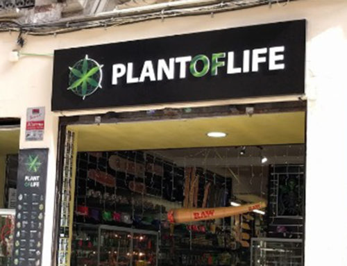 Reseña Plant Of Life