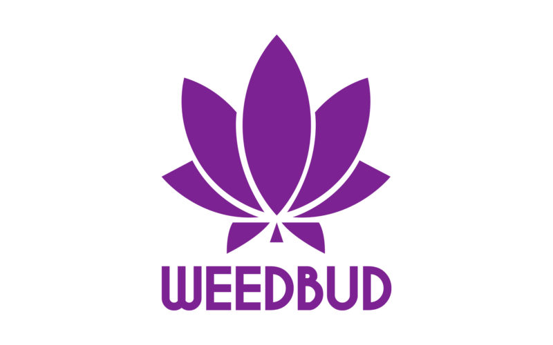 Weed Buddy Logo Purple with a Marijuana Leaf