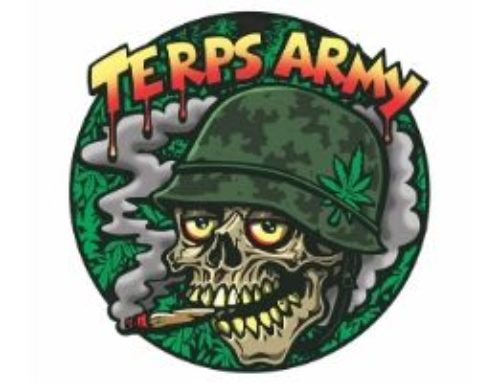 Terps Army