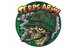 Terps army cannabis club barcelona